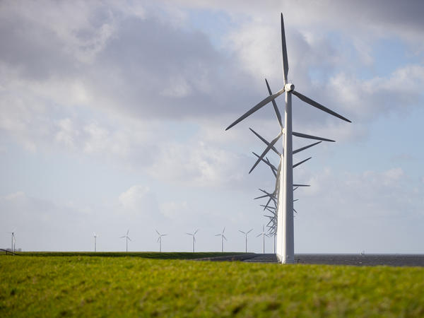 A new International Energy Agency report on climate change calls for halting approval of all new coal power plants this year. Here, wind turbines are seen on a dike near Urk, Netherlands, in January.