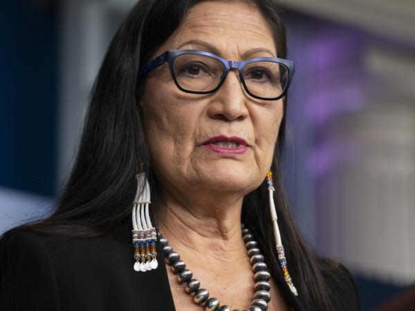 Voters will go to the polls Tuesday to fill the House seat left vacant when Deb Haaland was confirmed as the first Native American to head the Department of the Interior.