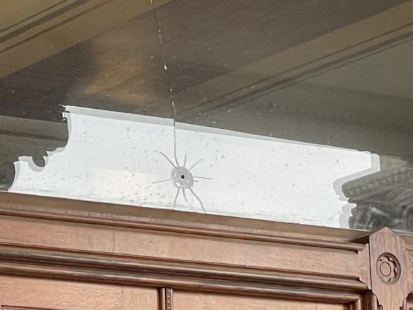 Damage from one of three gunshots that hit the state Capitol in Hartford. This window is in the entry foyer on the south side of the building.