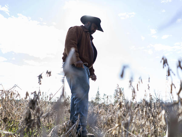 """President of the National Black Farmer's Association John Boyd stands in his fields in Baskerville, Va. He says the USDA's relief program is """"like the fox watching the hen house."""""""
