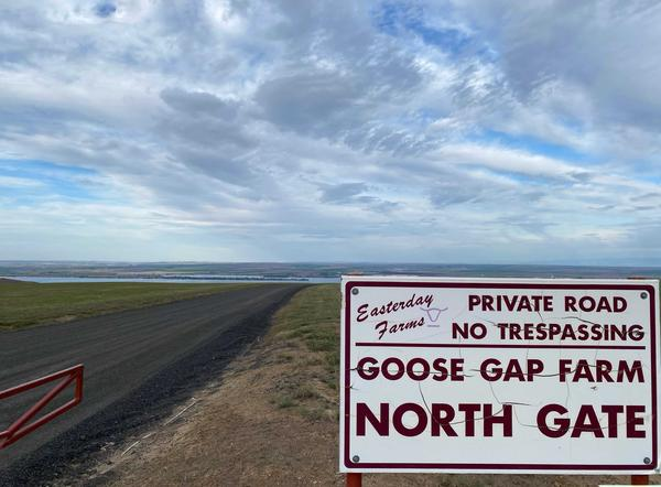Goose Gap Farm is one of several large swaths of farmland that are up for sale in a major auction in the bankruptcy of Easterday Farms and Easterday Ranches.