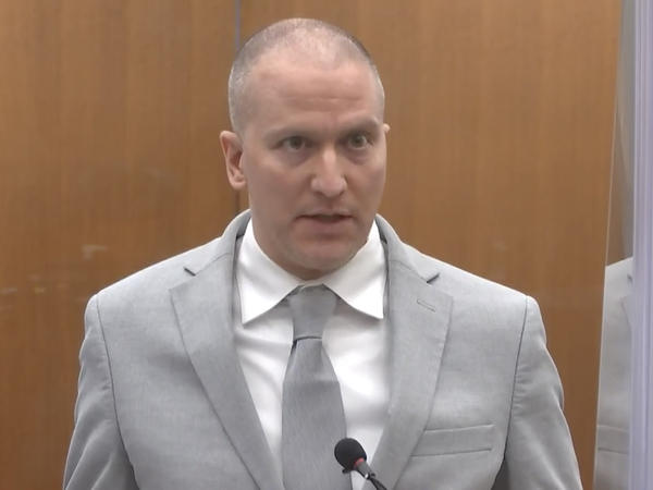 Former Minneapolis police officer Derek Chauvin addresses the court Friday at his sentencing hearing. He was sentenced to 22 1/2 years in prison for the murder of George Floyd.