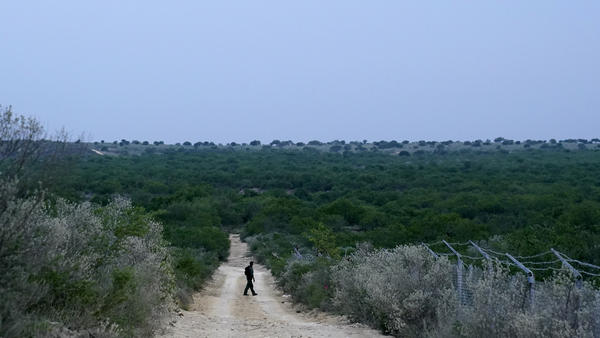 A Border Patrol agent walks along a dirt road near the U.S.-Mexico border, in Roma, Texas, in May.