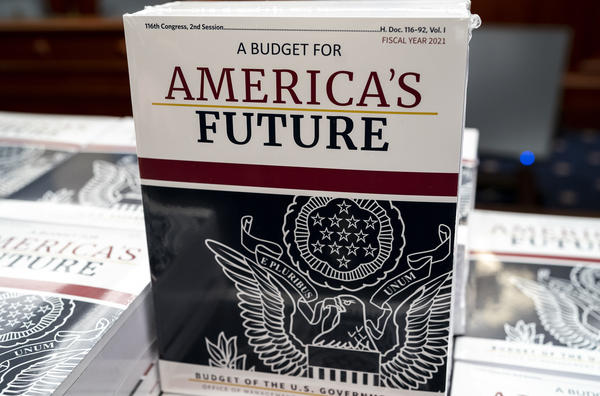 President Trump's proposed budget projects federal deficits until 2035.