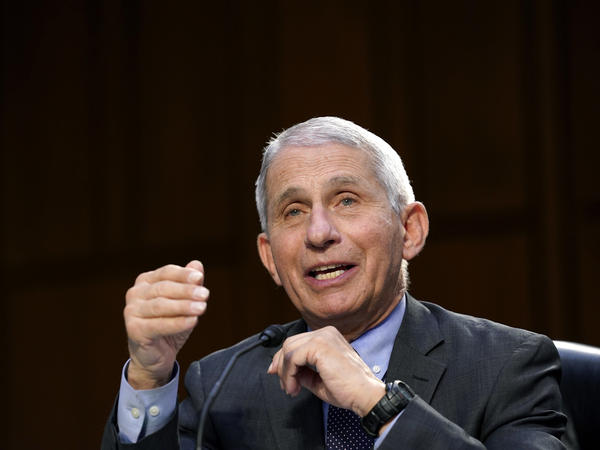 In this March 18, 2021 file photo, Dr. Anthony Fauci testifies during a Senate Health, Education, Labor and Pensions Committee hearing.