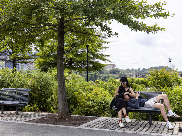 People relax at the Georgetown Waterfront Park on Monday in Washington, D.C. While pandemic restrictions have been lifted for much of the U.S., the delta variant of the coronavirus is hospitalizing thousands of people in the U.S. who have so far not gotten vaccinated.