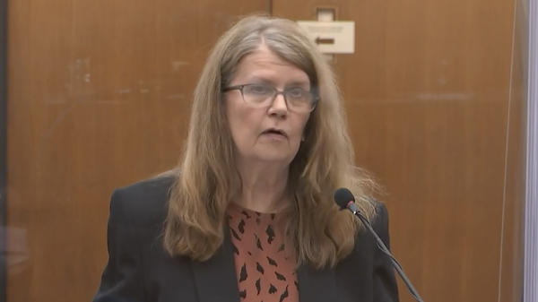 Carolyn Pawlenty, the mother of former Minneapolis police officer Derek Chauvin, speaks in court Friday on her son's behalf. She asked Judge Peter Cahill to be lenient in sentencing her son.