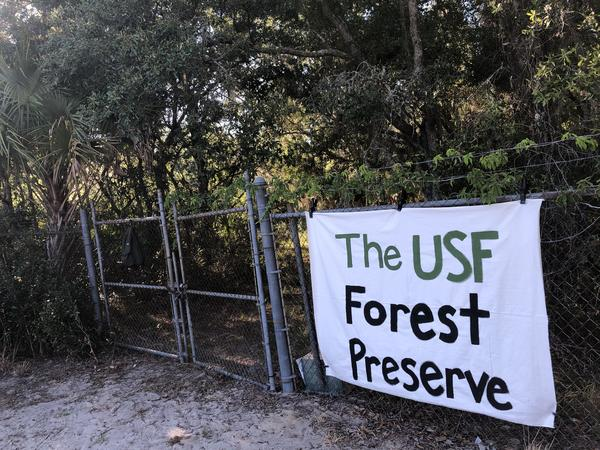 At least 15 courses have used the USF Forest Preserve as part of the curriculum in recent years.