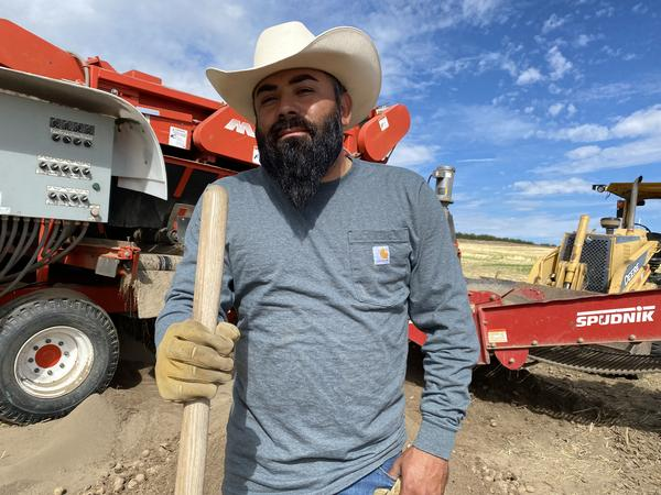 Ramon Quezada, 39, a supervisor at Alford Farms north of Pasco, loves to whistle while he works. But the potatoes this year are hard to sing about: the heat caused them to grow into weird shapes, at lower densities and lower internal quality will make them harder to store over the winter.