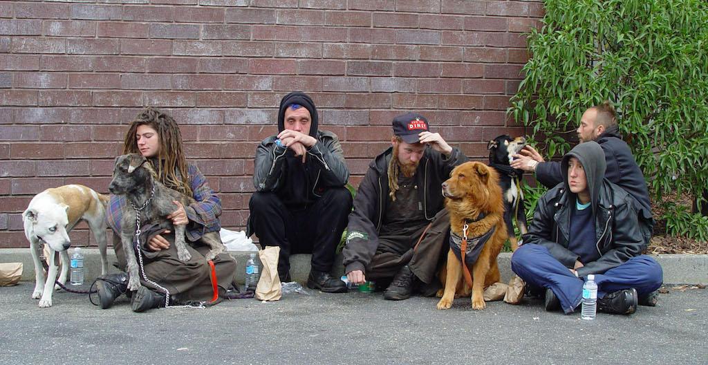 Tampa homeless teens