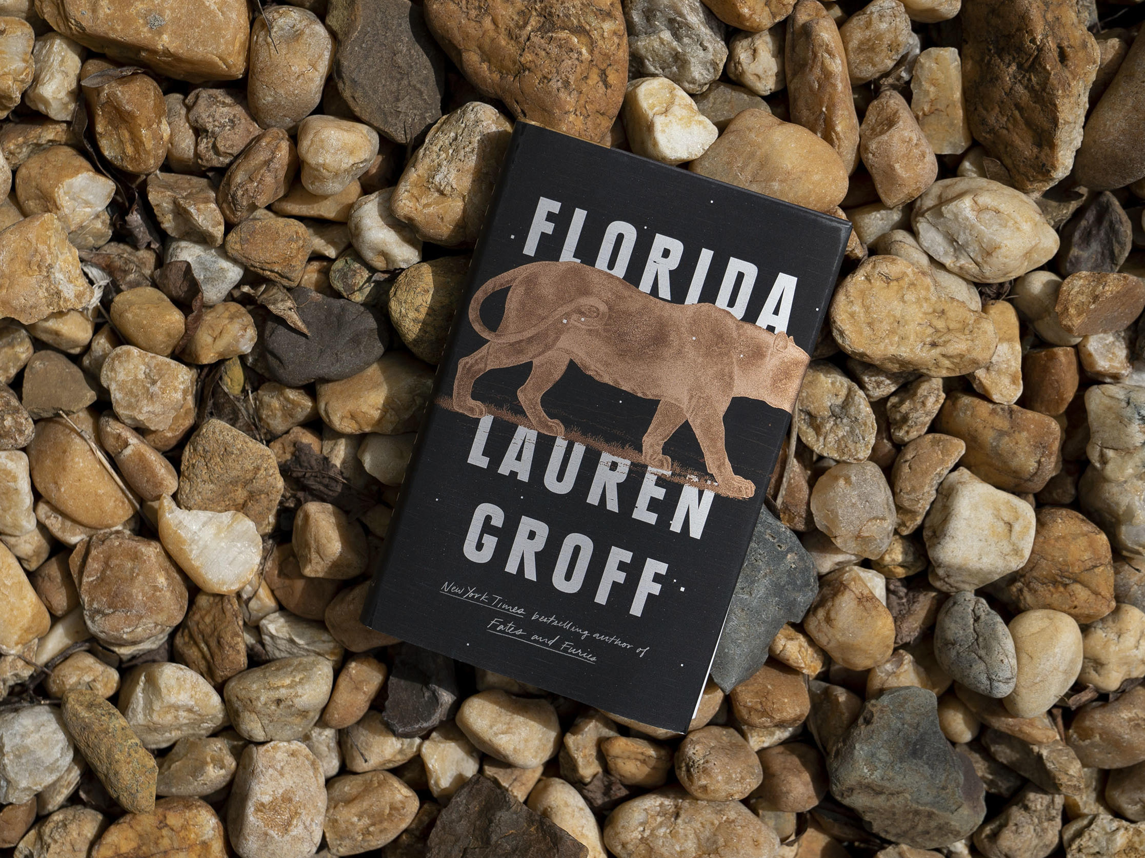 Southern Gothic Florida Spins Tales Of Hurricanes