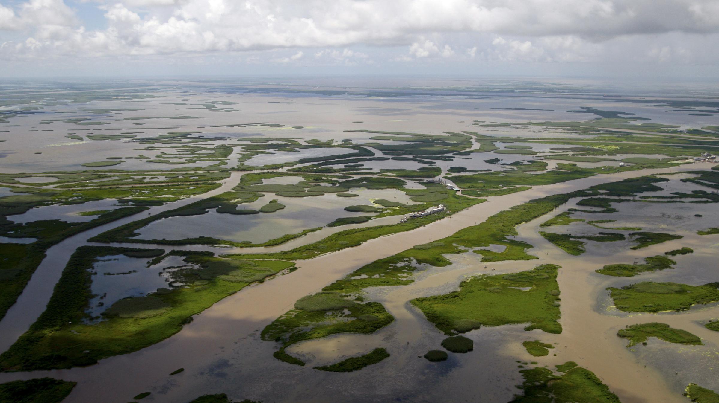 La  Flood Board Sues Oil Industry Over Wetlands   KERA News