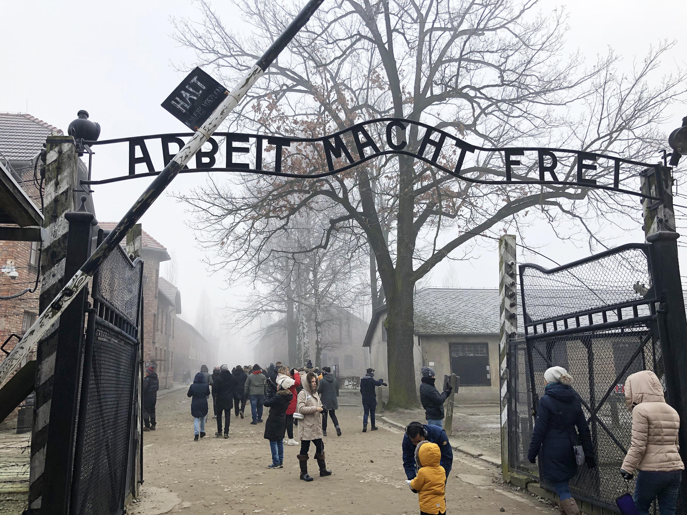 75 Years After Auschwitz Liberation, Survivors Urge World To Remember
