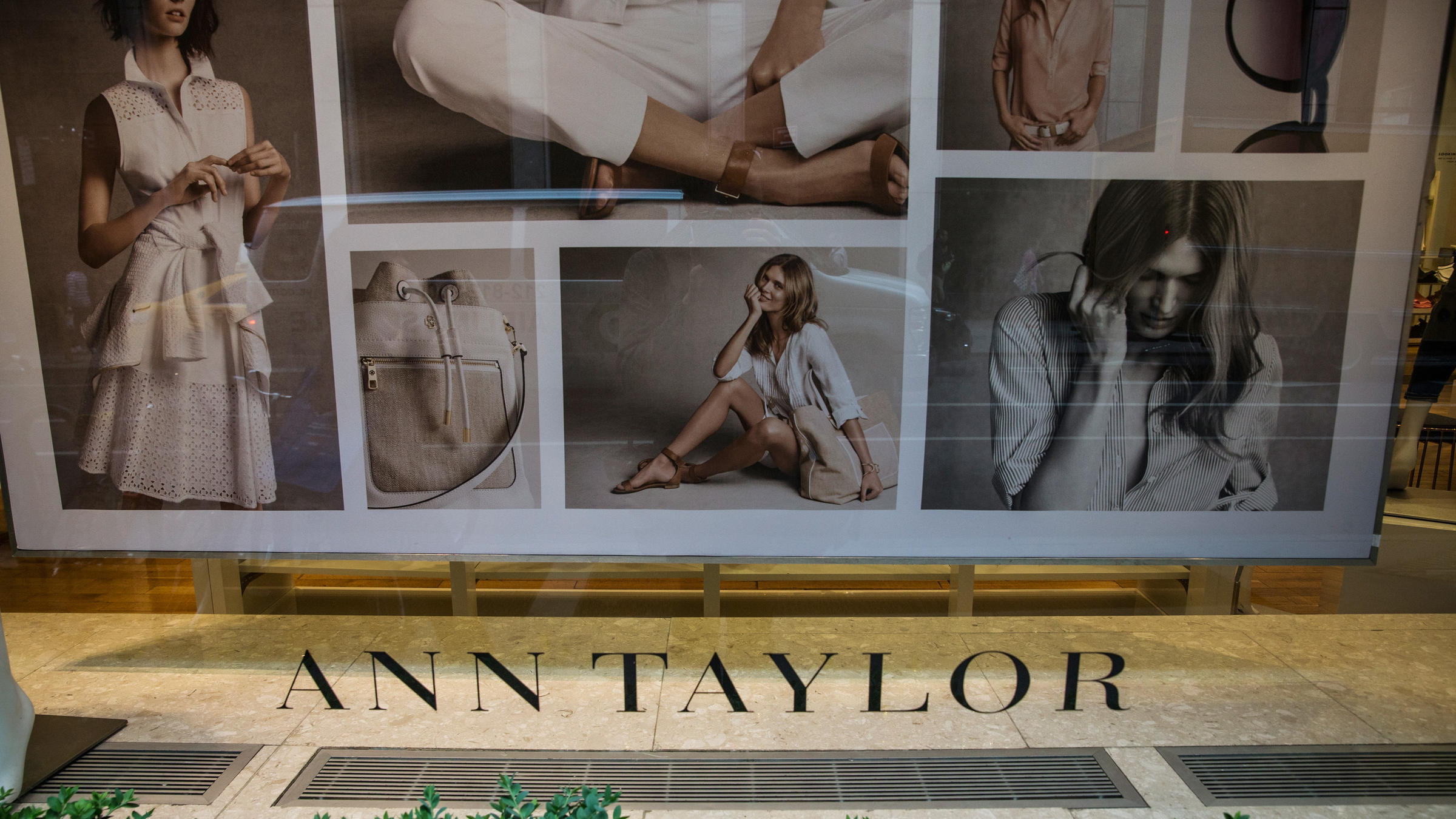 Ann Taylor, Lane Bryant owner files Chapter 11 bankruptcy