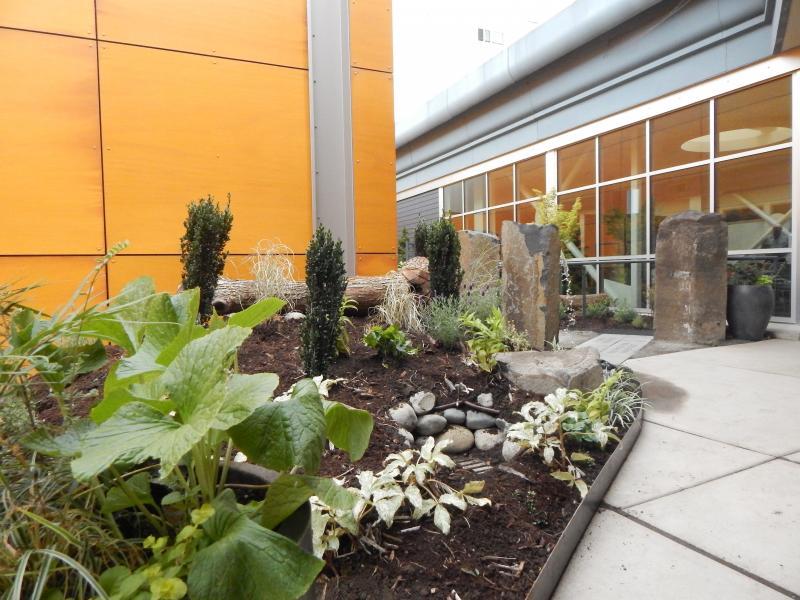 Puget Sound VA's new healing garden, built by UW landscape architecture students.