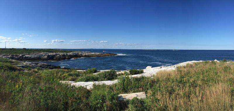 Eco-Culinary Retreat Off Maine Coast Showcases Creative Ways To Cook Invasive Species