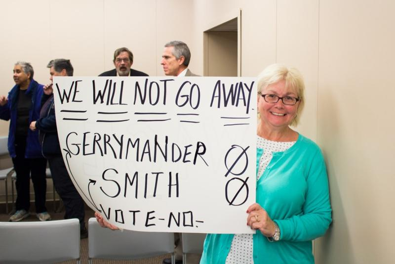 Barbara Wolanin was one of around 30 people protesting the legislature's failure to adopt redistricting reform. (Nick Janzen/IPBS)