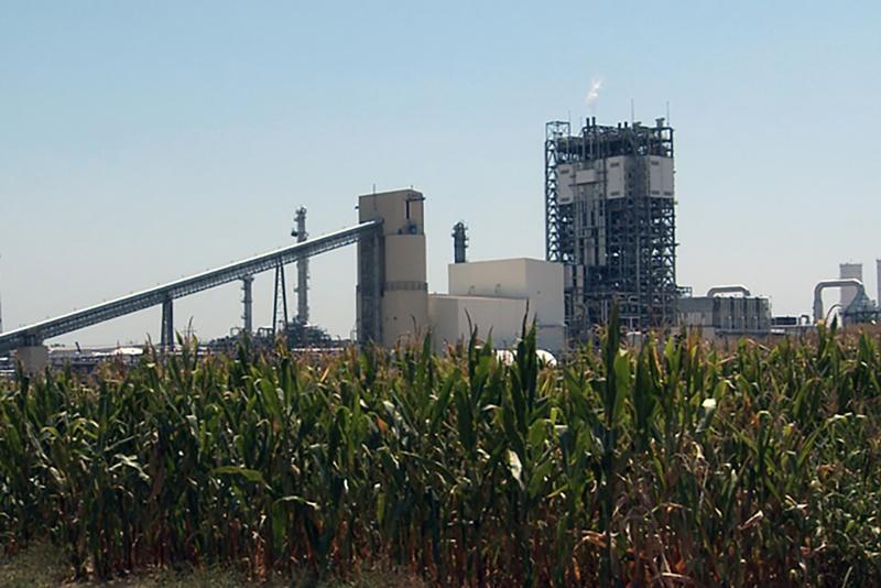 Duke Energy's coal gasification plant rises above corn in Edwardsport. (Gretchen Frazee/WFIU)