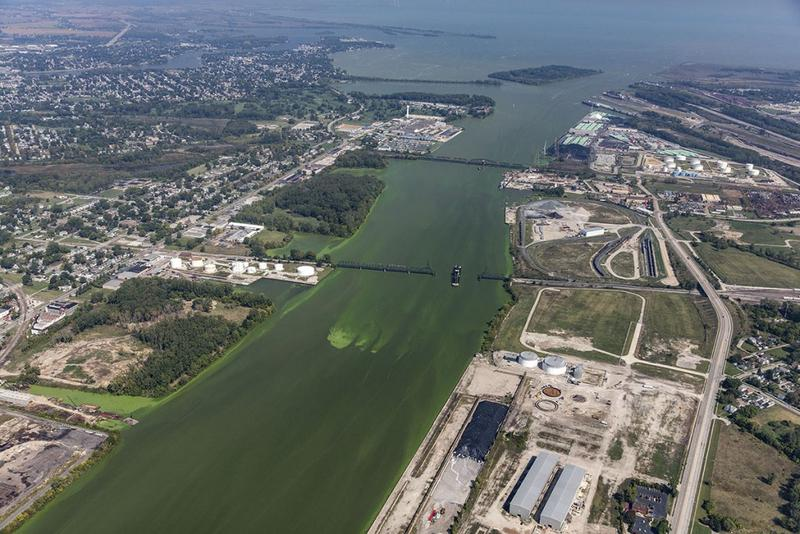 Algae blooms from Lake Erie entered the Maumee River, which begins in Fort Wayne, this year. (Photo courtesy of Aerial Associates Photography, Inc. by Zachary Haslick)