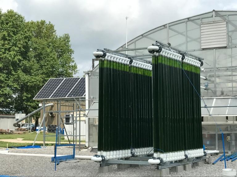 The system will be modeled after this photobioreactor, located at Duke Energy's East Bend Coal Power Plant, designed by the University of Kentucky. (Photo courtesy of Center for Applied Energy Research)