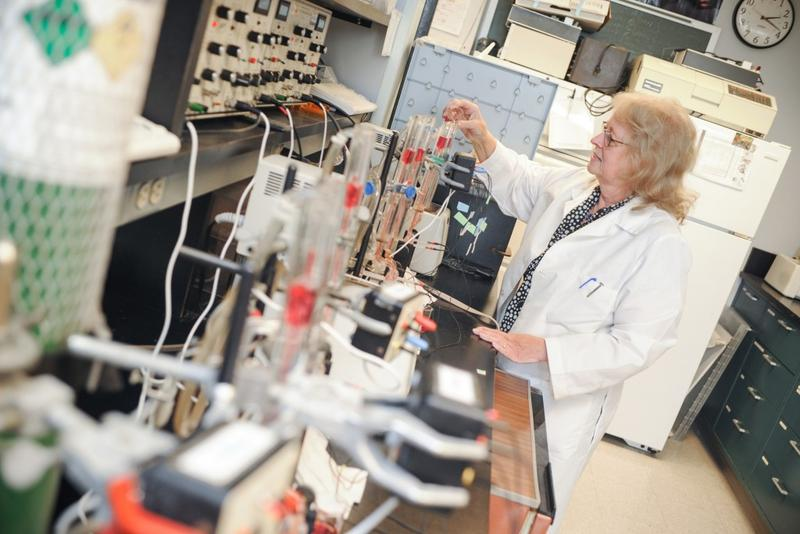 Bonnie Blazer-Yost uses electrophysiological techniques to study ion transport in her School of Science lab. (Photo courtesy of School of Science at IUPUI)