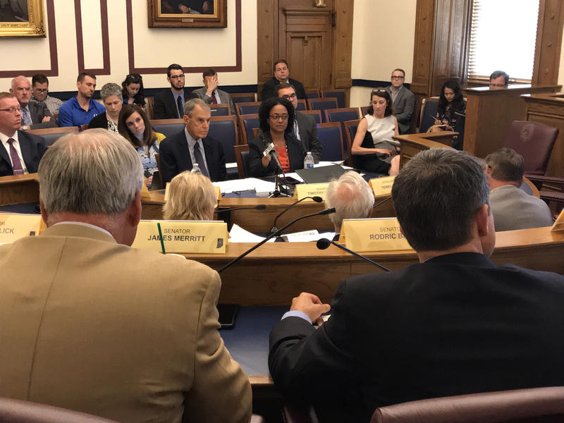 Independent evaluator Paul Vincent (center left) and DCS Director Terry Stigdon (center right) discuss DCS issues with Indiana's Legislative Council. (Brandon Smith/IPB News)