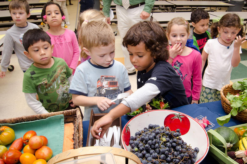 Students in Virgina learn about fruits and vegetables grown near their school. (Lance Cheung/USDA)