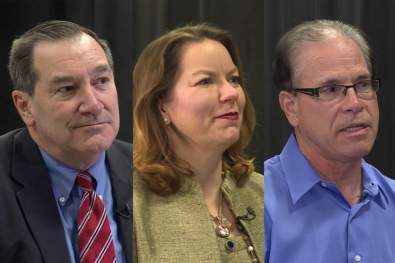 Indiana U.S. Senate candidates, from left: Sen. Joe Donnelly (D-Ind.), Libertarian Lucy Brenton, Republican Mike Braun. (WTIU)
