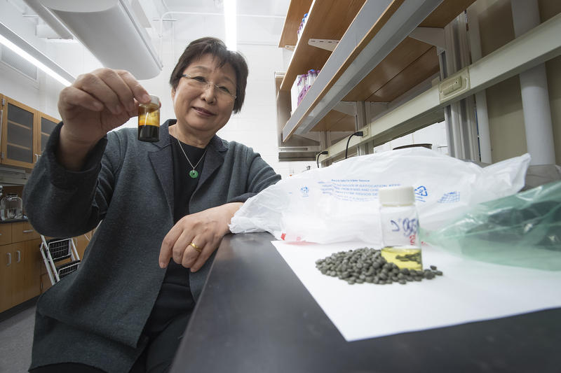 Before the polyolefin plastics can get dissolved in the supercritical water, they're first turned into pellets like the ones in the bottle Linda Wang is holding (Purdue Research Foundation/Vincent Walter)