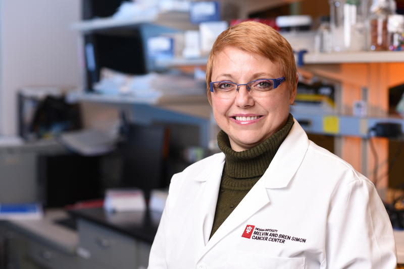 Sophie Paczesny, MD, PhD, professor of pediatrics and of microbiology and immunology at IU School of Medicine and a researcher at the Indiana University Melvin and Bren Simon Cancer Center. (Courtesy of IU Simon Cancer Center)
