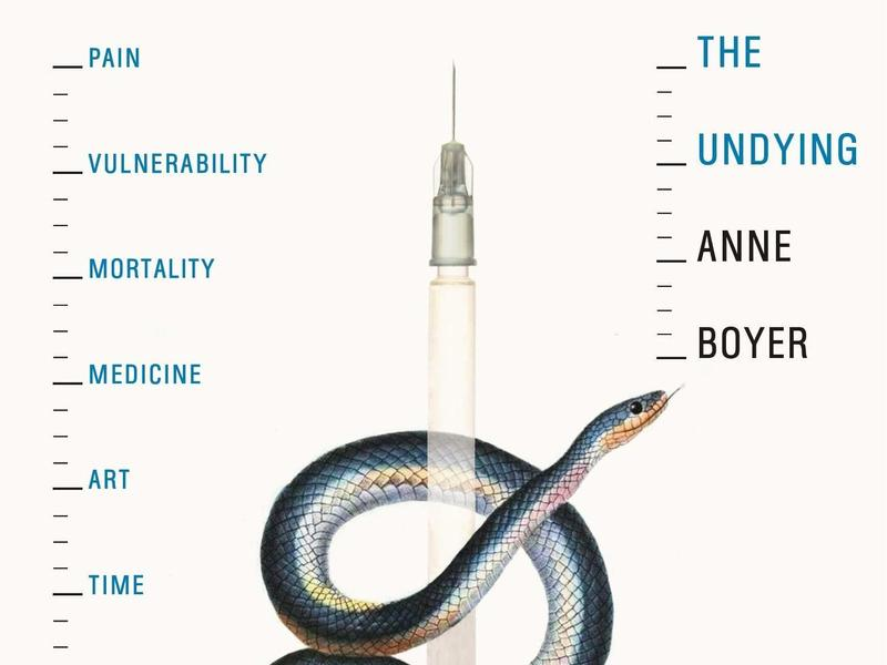 The Undying: Pain, vulnerability, mortality, medicine, art, time, dreams, data, exhaustion, cancer, and care, by Anne Boyer