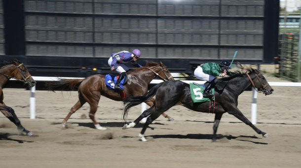 Skill or chance? States debate historical horse games