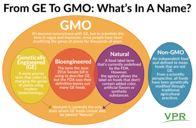 GMO, GE, Bioengineered   What Do All These Food Labels Mean
