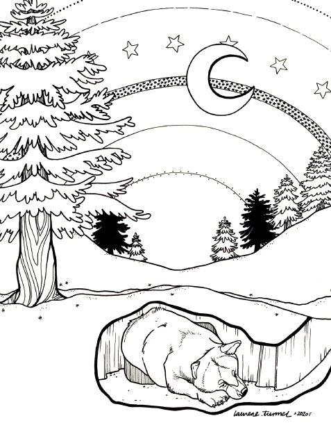 USA-Printables: State of Vermont Coloring Pages - Vermont ... | 612x477