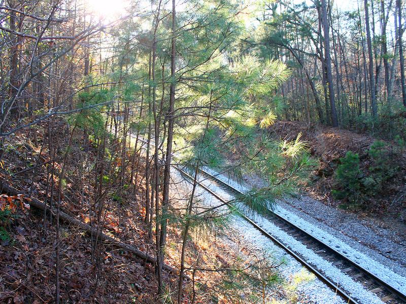 Dirt trails off the South Peachtree Creek Trail run along the CSX railroad line.