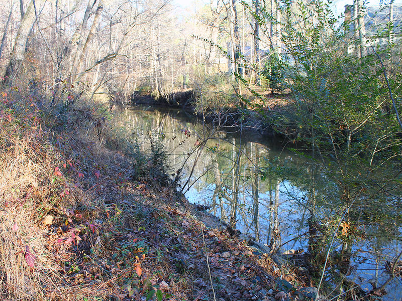 The South Peachtree Creek babbles on one side of the path.