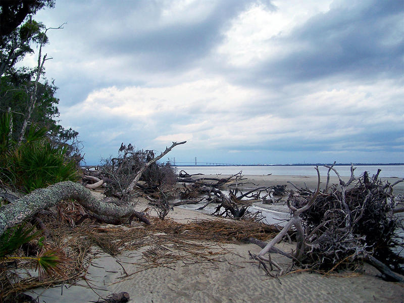 Erosion is impacting Jekyll Island's North Beach.
