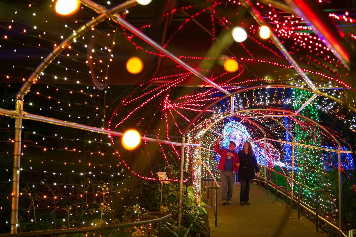 Botanical Gardens Atlanta Light Show Iron Blog
