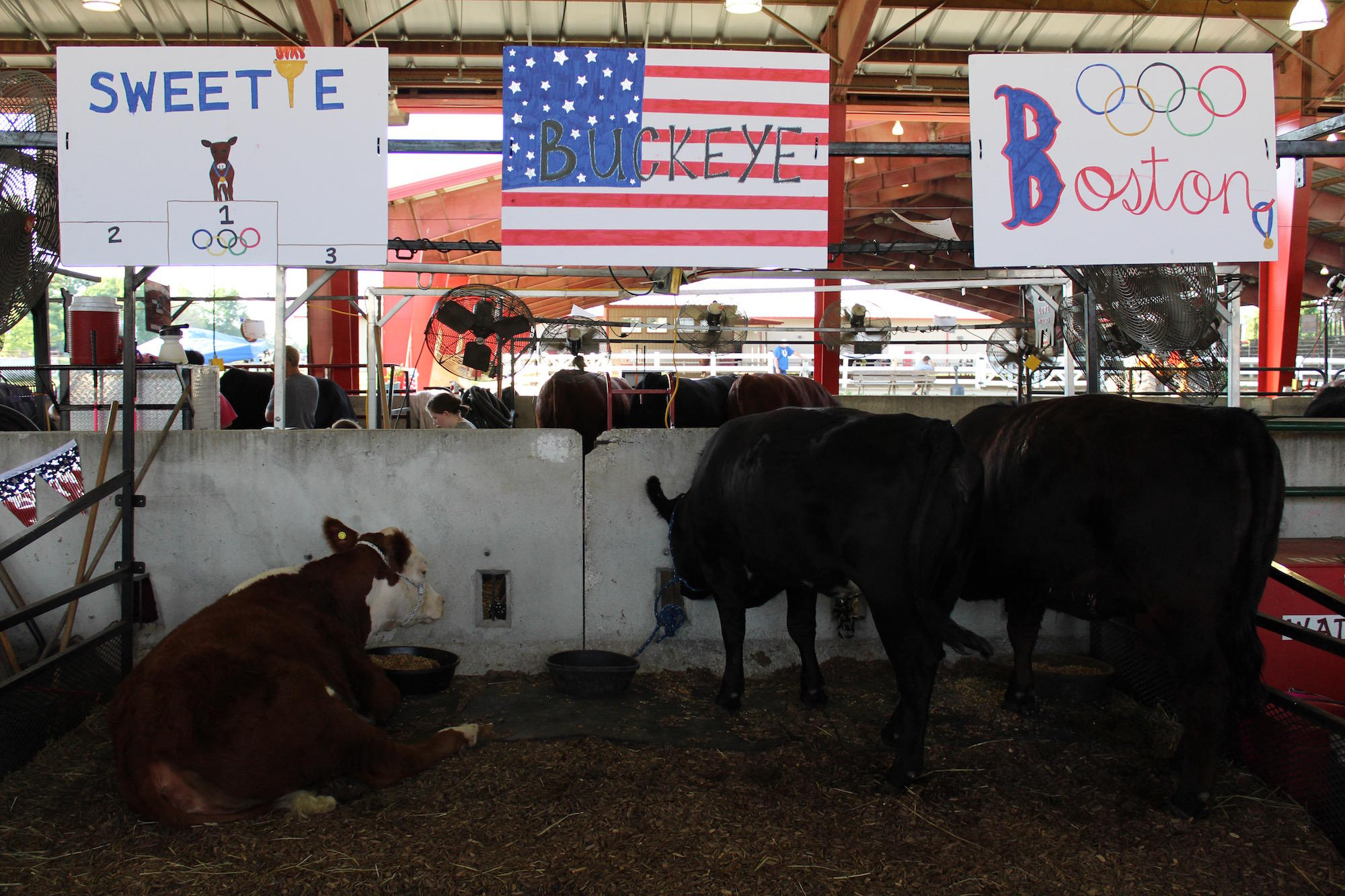 As Agriculture Modernizes, County 4-H Fairs Work To Keep Pace | WBAA