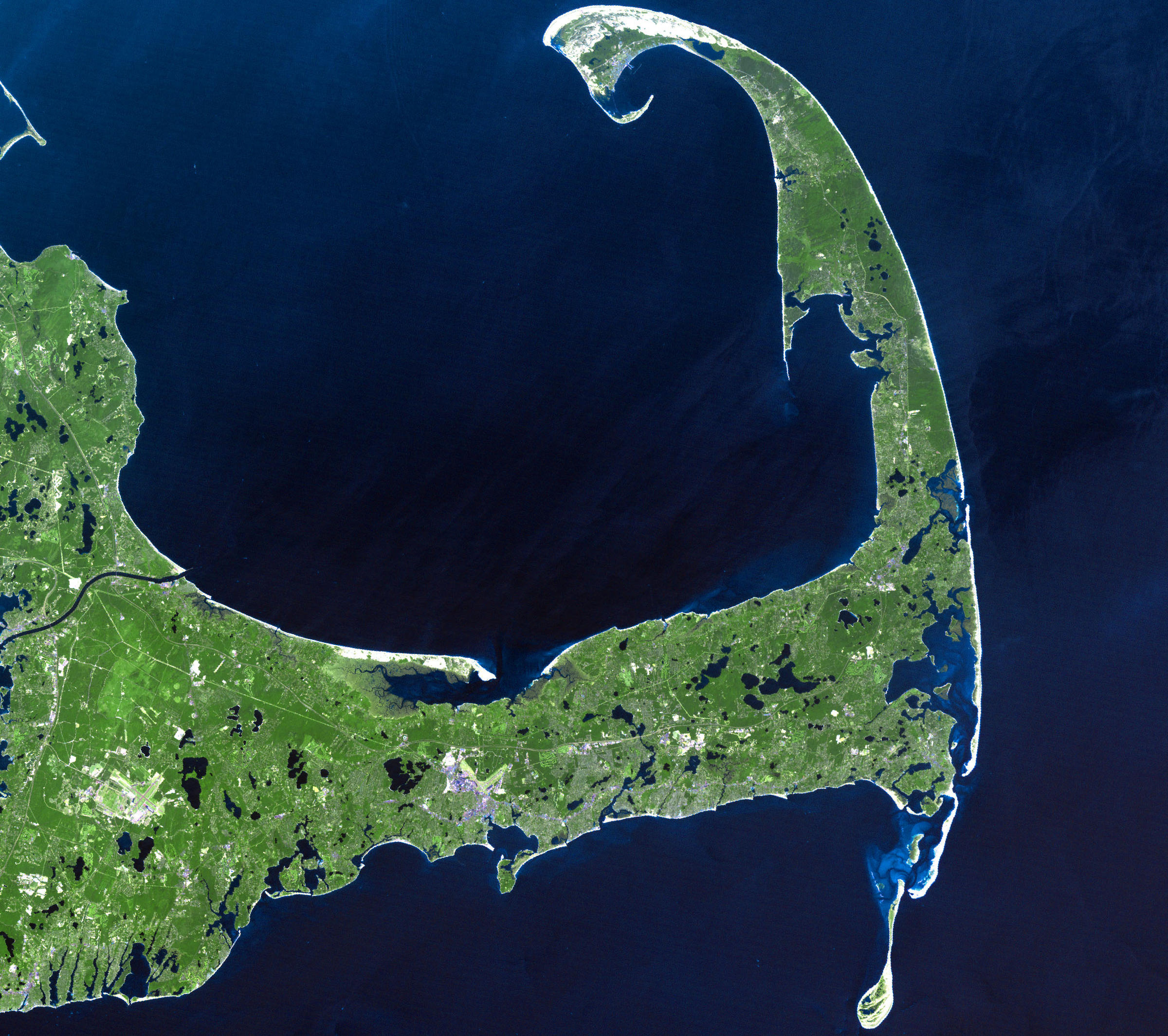 Wcai S Local News Roundup Mini Patriot Place Proposed In Sandwich Shark In The Bay Lyme Testing Cai A stoat sandwich is a sandwich made with the meat of a stoat. wcai s local news roundup mini