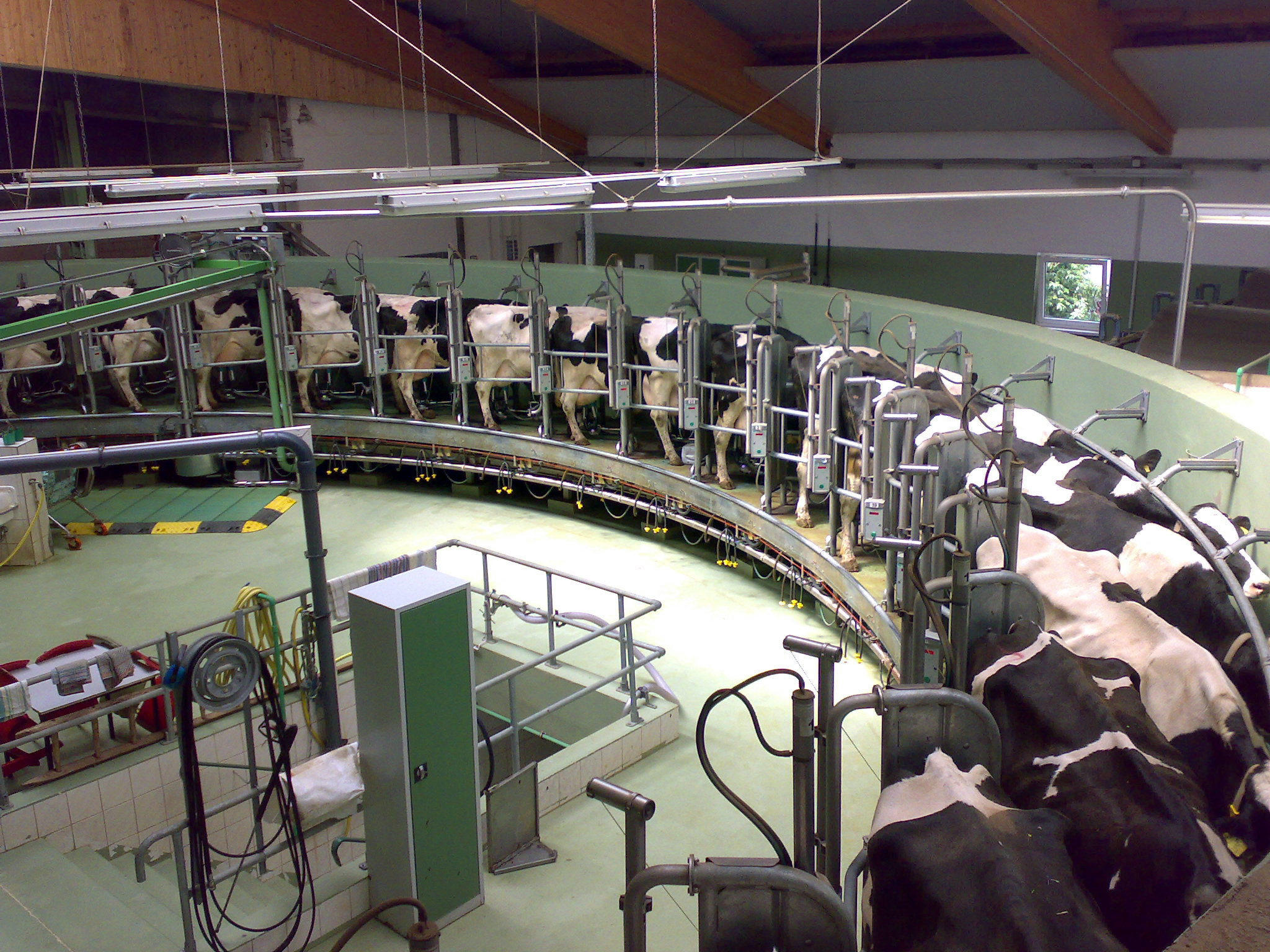 Two New Dairy Processing Plants Expected In Michigan By