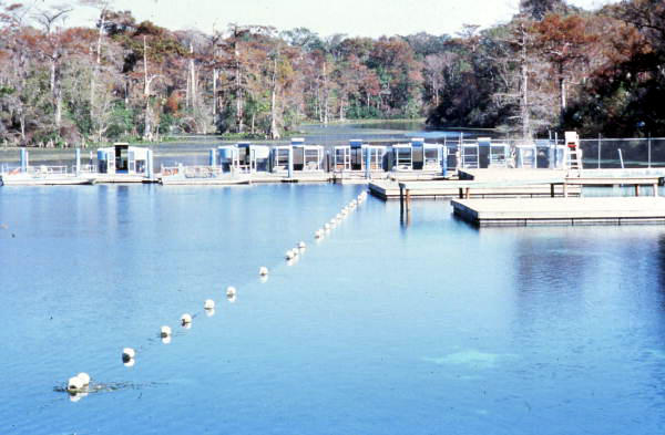 wakulla springs florida memory In: Everyone Knows the Answer | Our Santa Fe River, Inc. | Protecting the Santa Fe River in North Florida