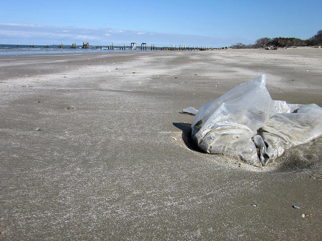 Jacksonville Beach Council Votes To Support Changing Plastic Bag Regulation