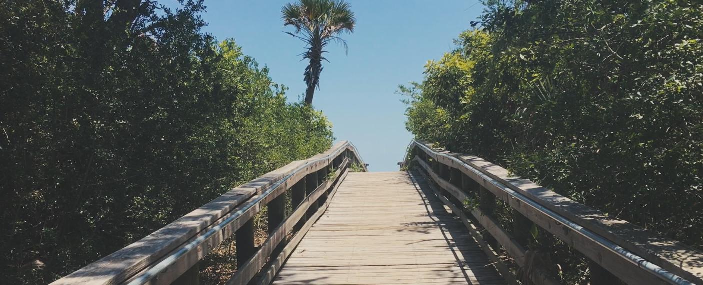 A Boardwalk Leads To Freshwater Lake In Kathryn Abbey Hanna Park