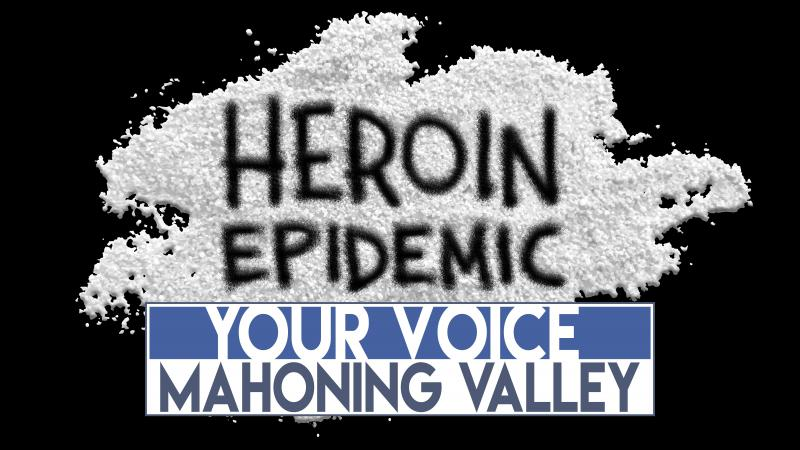Your Voice Mahoning Valley logo
