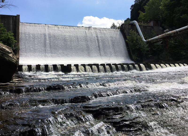The Gorge dam holds 832,000 cubic feet of contaminated sediment behind it that must be removed before it comes down. An engineering study being launched later this year will detail that important step.