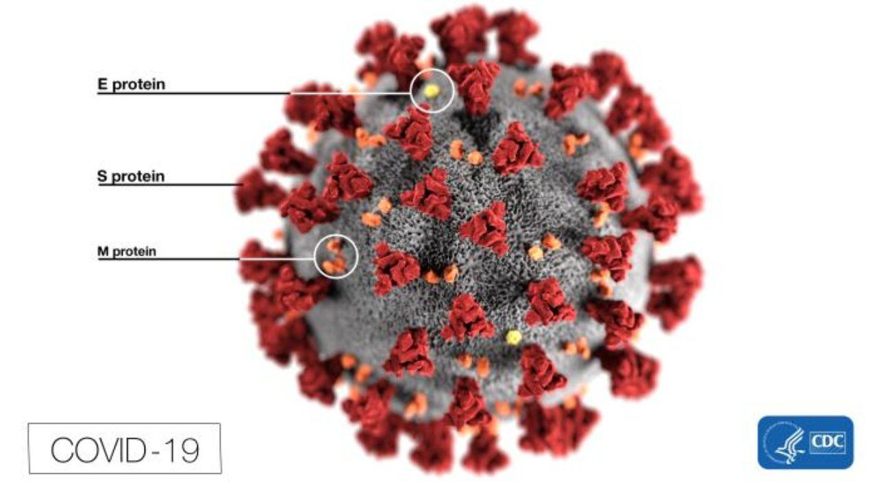 As Coronavirus Numbers Rise, C.D.C. Testing Comes Under Fire
