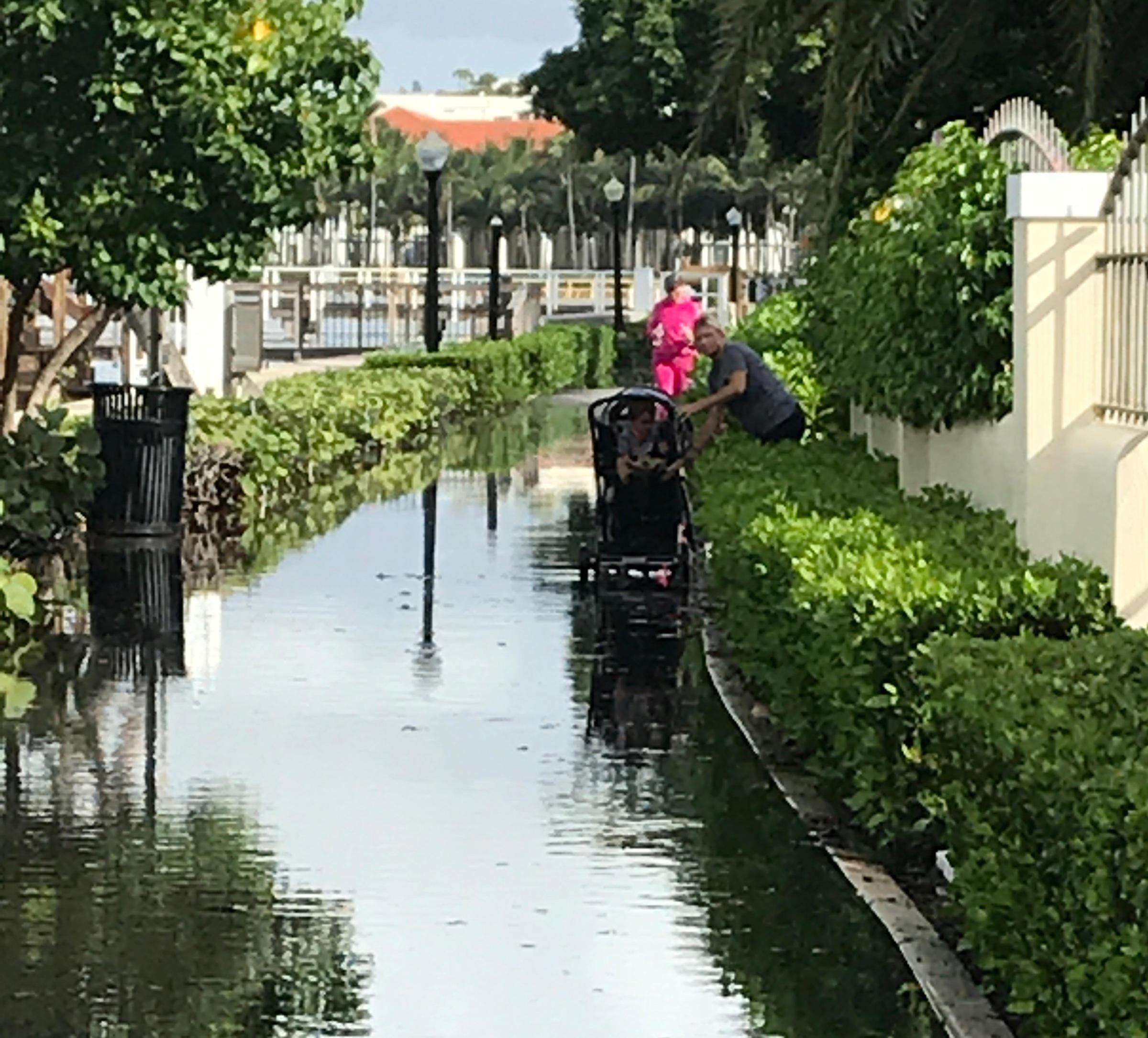 King Tide Gives South Florida A Taste Of Life Underwater | WLRN