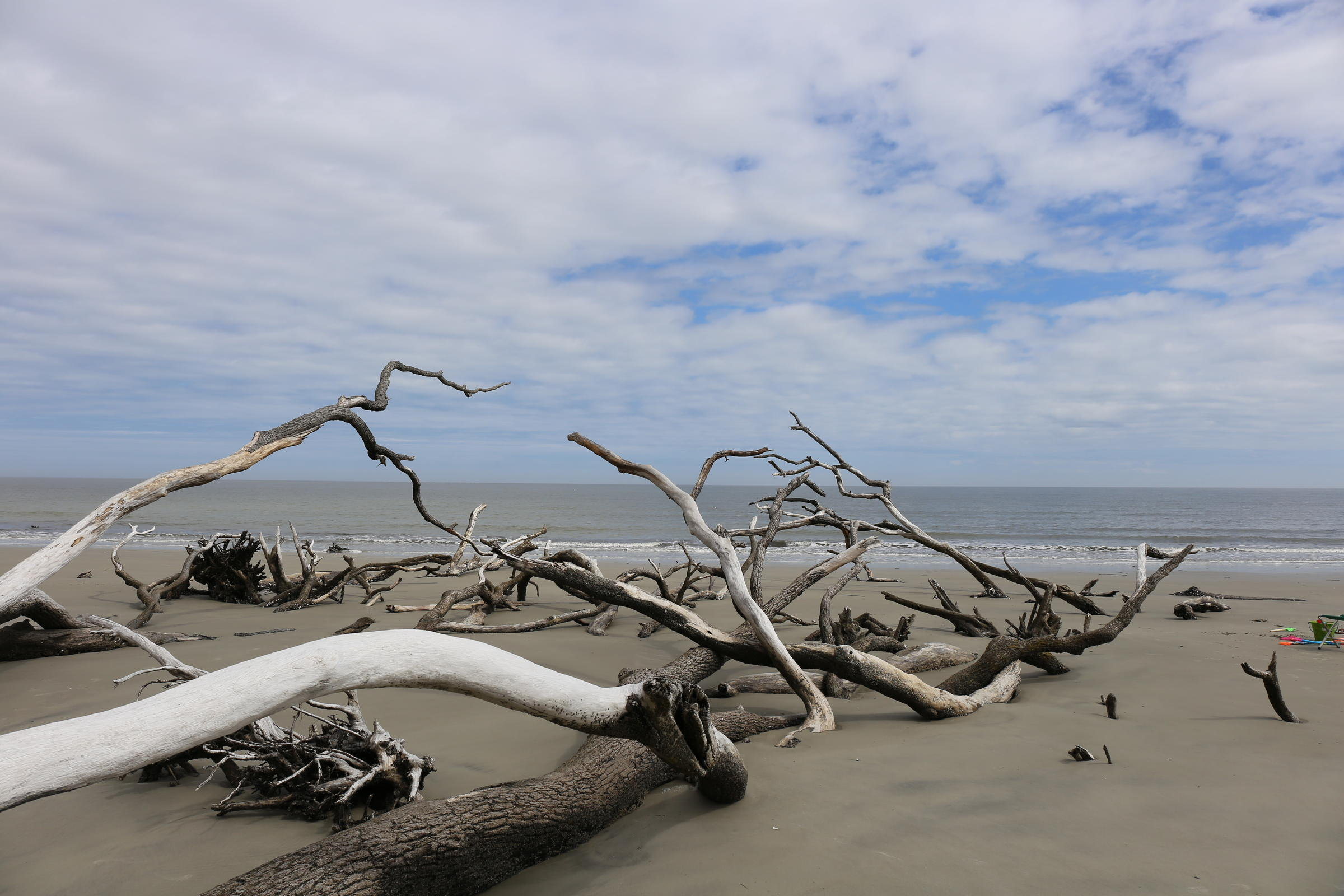 Popular State Park Reopens after Hurricane Damage | South