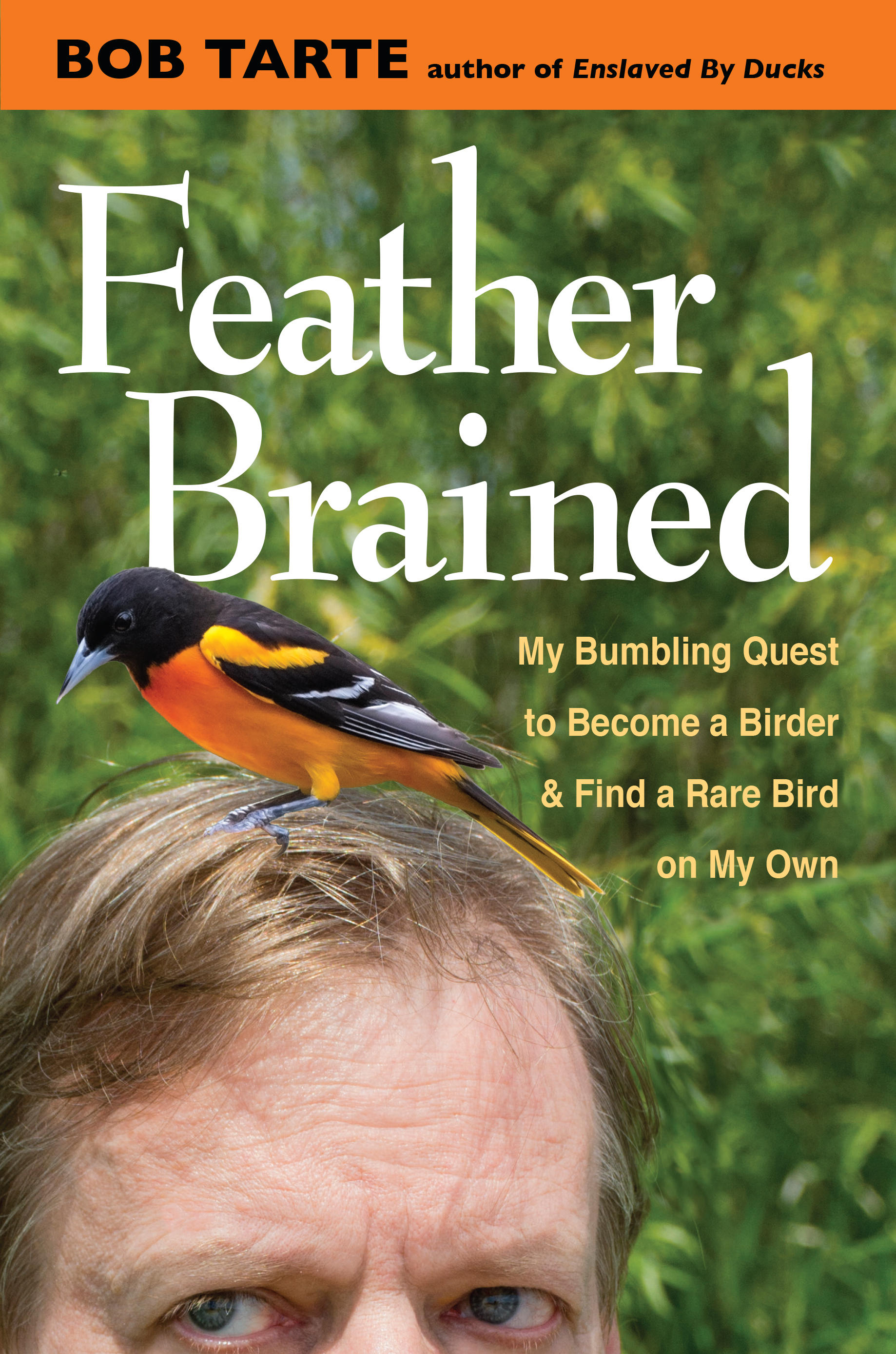 Between the Lines: Feather Brained | WMUK